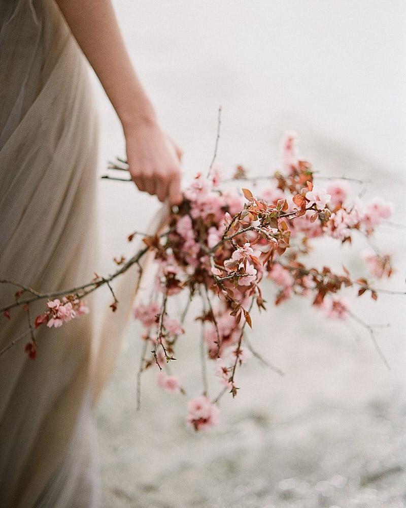 Bouquet de fleurs de cerisier